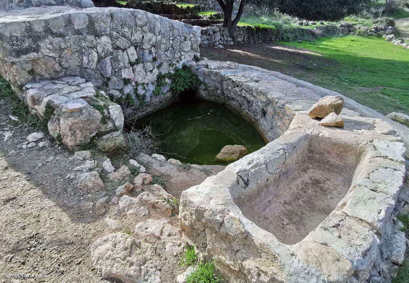 The trough and the pool to which the water from Ein Hawd spring