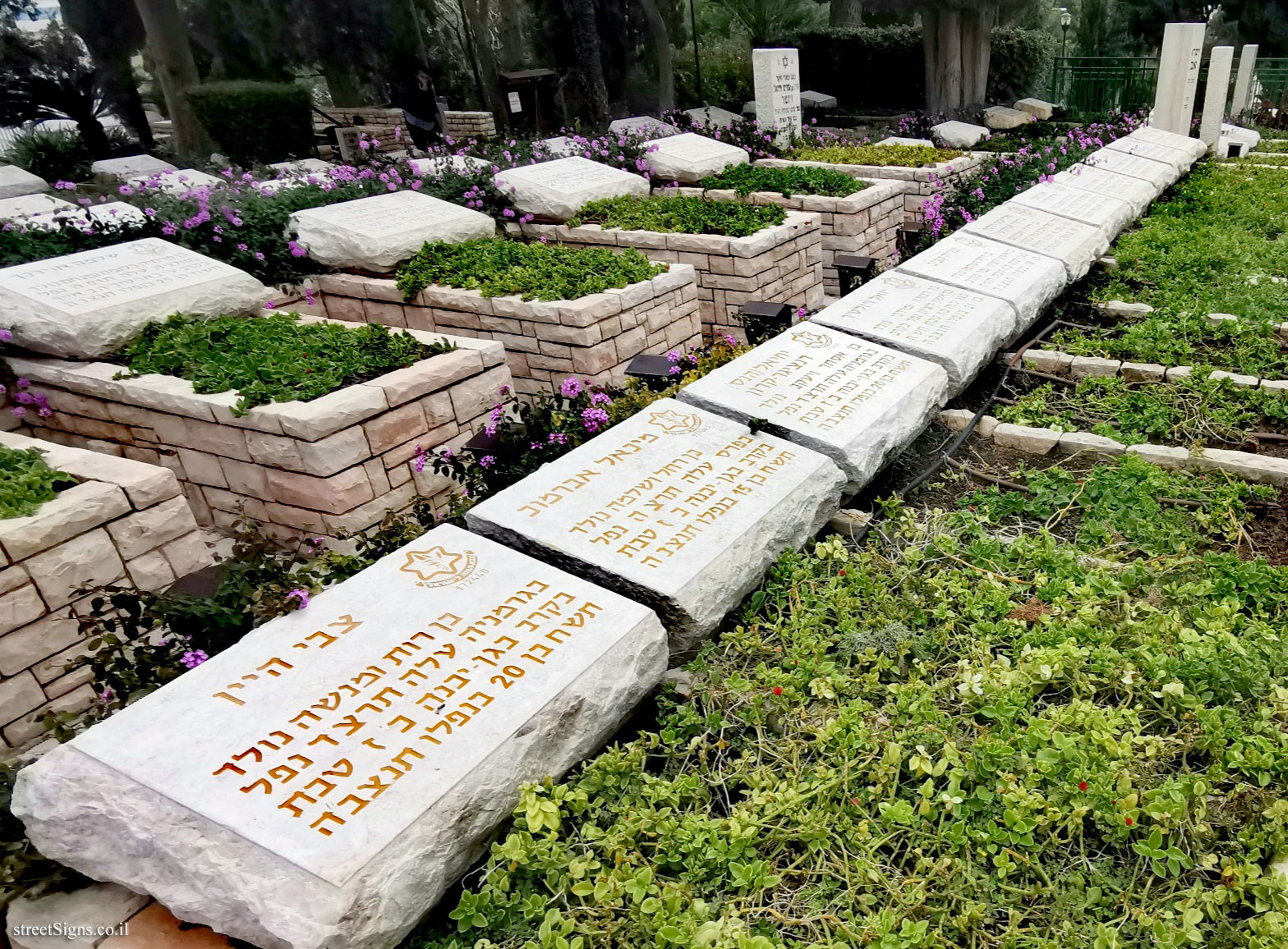 The line of the 11th tombs - the military cemetery - Rishon Lezion